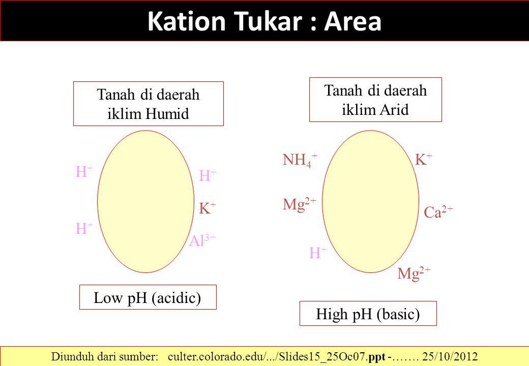 Kation Tukar : Area Tanah di daerah iklim Humid Tanah di daerah iklim Arid H+H+ H+H+ H+H+ Al 3+ K+K+ K+K+ Ca 2+ Mg 2+ H+H+ NH 4 + Low pH (acidic) High
