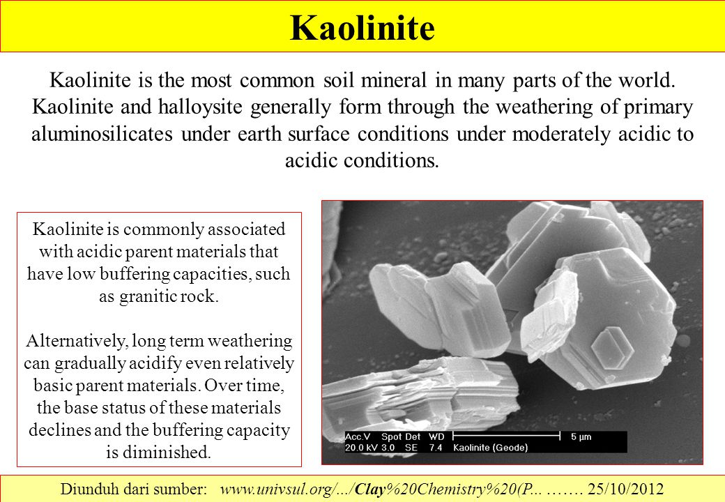 Kaolinite Kaolinite is the most common soil mineral in many parts of the world. Kaolinite and halloysite generally form through the weathering of prim