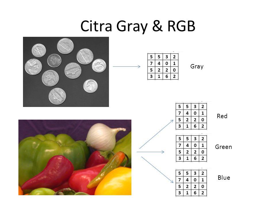 Definisi Citra Digital 122810 67 155...