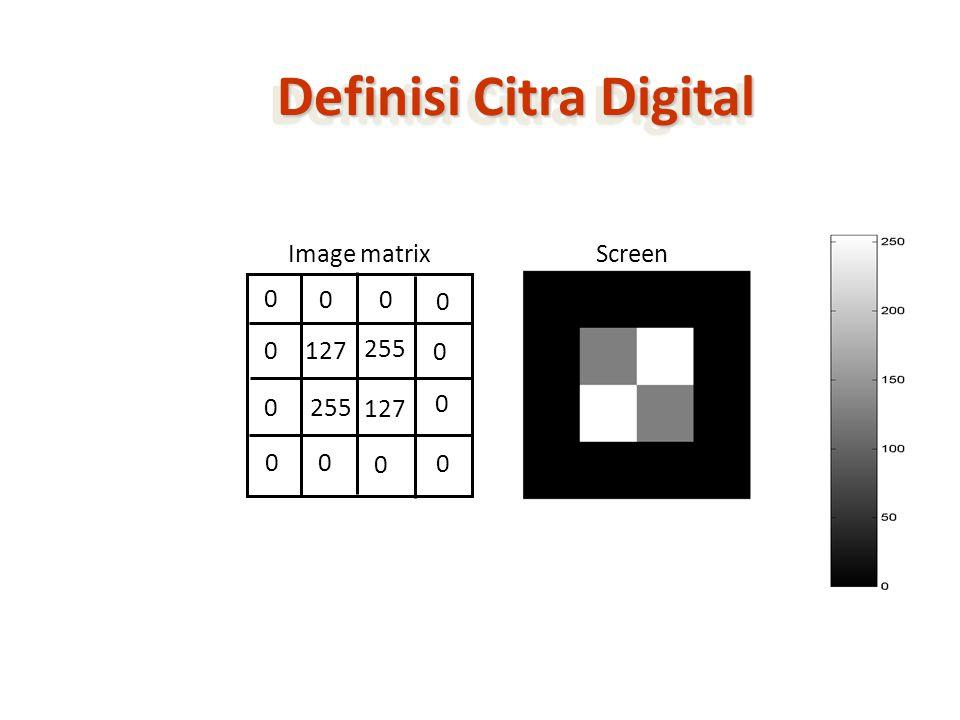 Proses Digitalisasi DIGITALISASI (SCANNER) I(x, y) I(i, j)