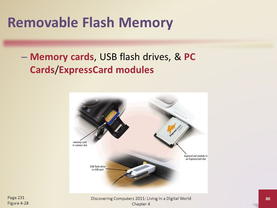 Removable Flash Memory – Memory cards, USB flash drives, & PC Cards/ExpressCard modules Discovering Computers 2011: Living in a Digital World Chapter 4 30 Page 231 Figure 4-28