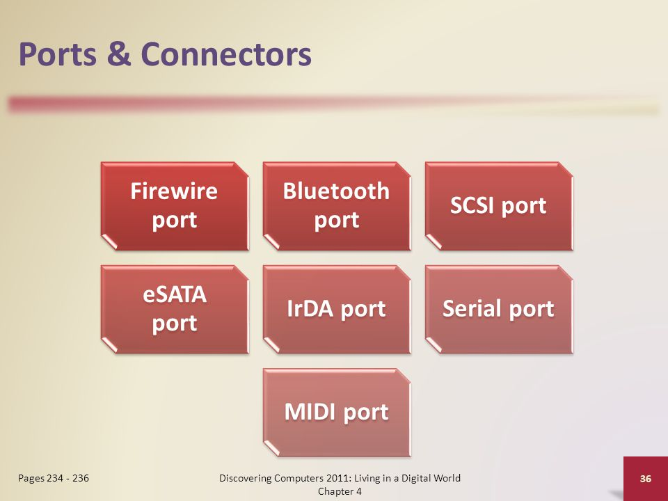 Ports & Connectors Discovering Computers 2011: Living in a Digital World Chapter 4 36 Pages 234 - 236 Firewire port Bluetooth port SCSI port eSATA port IrDA portSerial portMIDI port