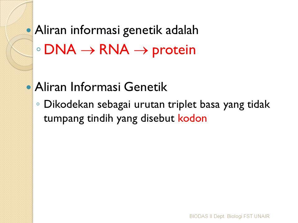 Aliran informasi genetik adalah ◦ DNA  RNA  protein Aliran Informasi Genetik ◦ Dikodekan sebagai urutan triplet basa yang tidak tumpang tindih yan