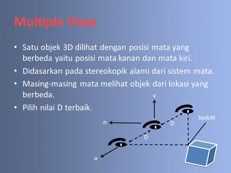 Multiple View Satu objek 3D dilihat dengan posisi mata yang berbeda yaitu posisi mata kanan dan mata kiri. Didasarkan pada stereokopik alami dari sist