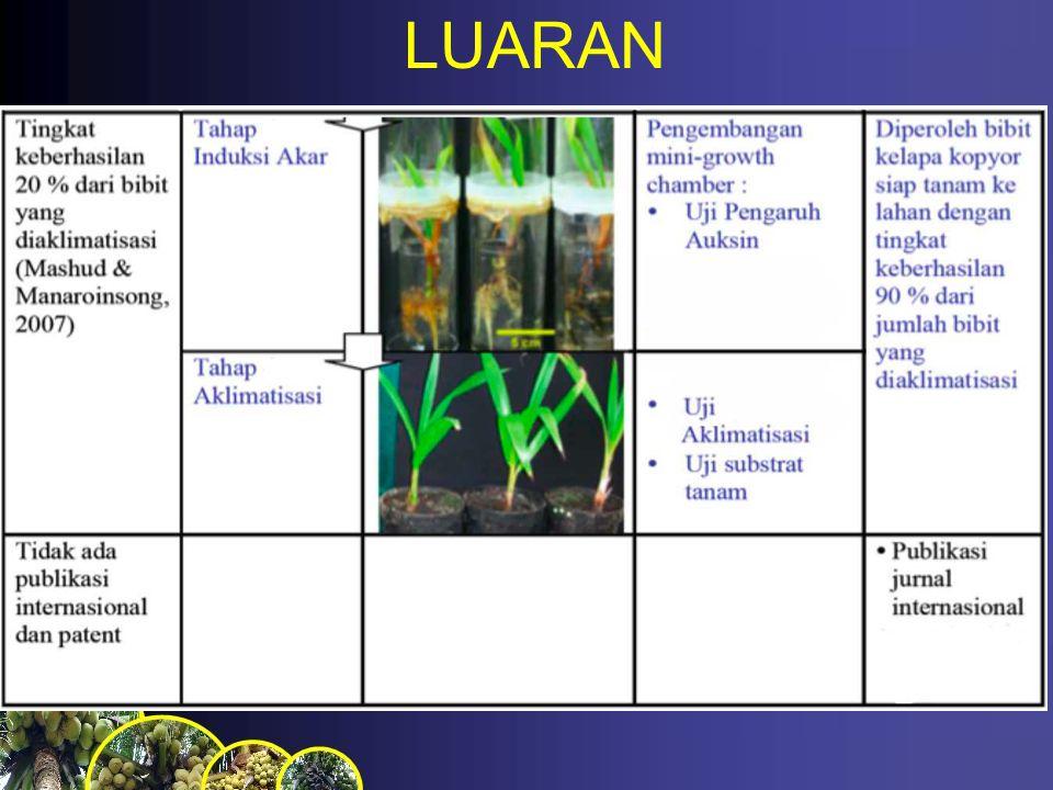 LUARAN
