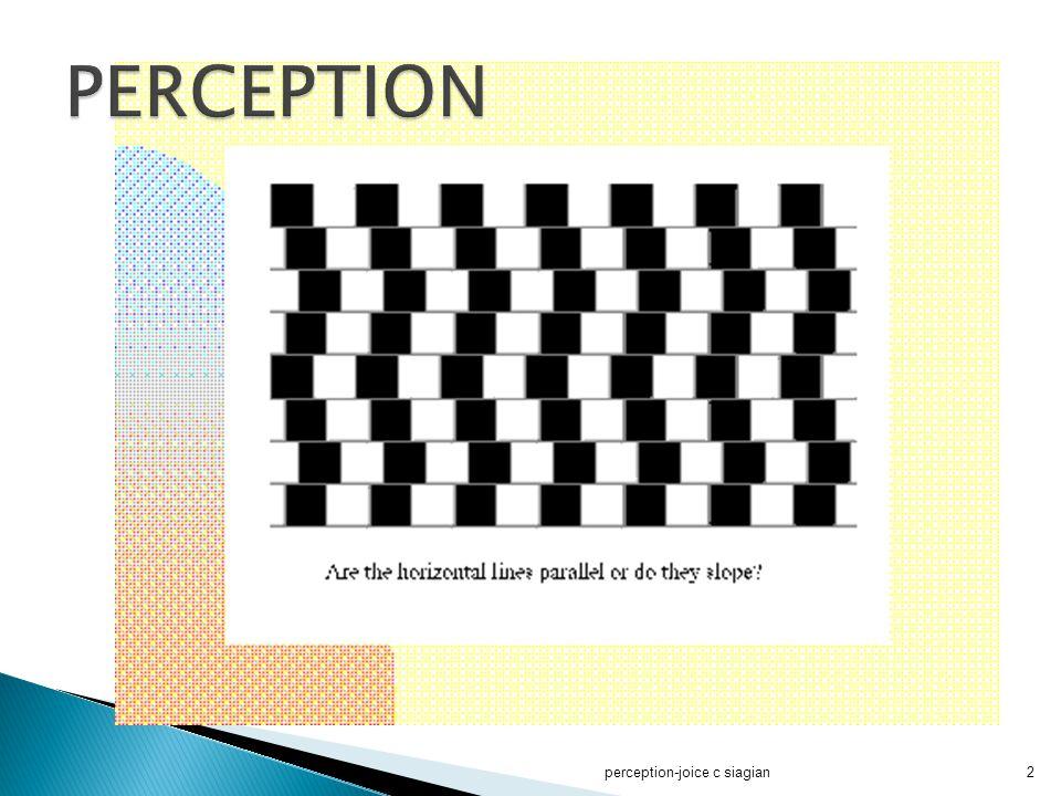 perception-joice c siagian43 Prinsip – prinsip Persepsi Sosial  3.