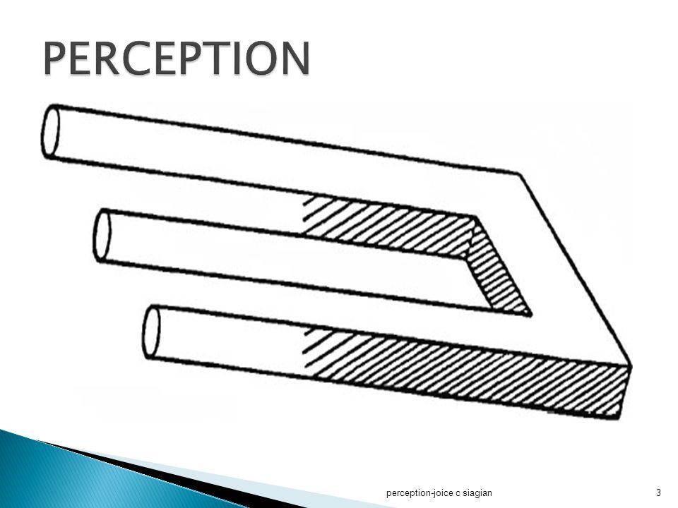 perception-joice c siagian44  3.
