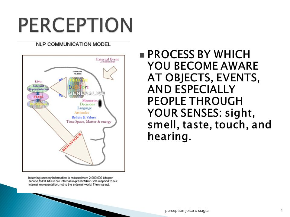 perception-joice c siagian45