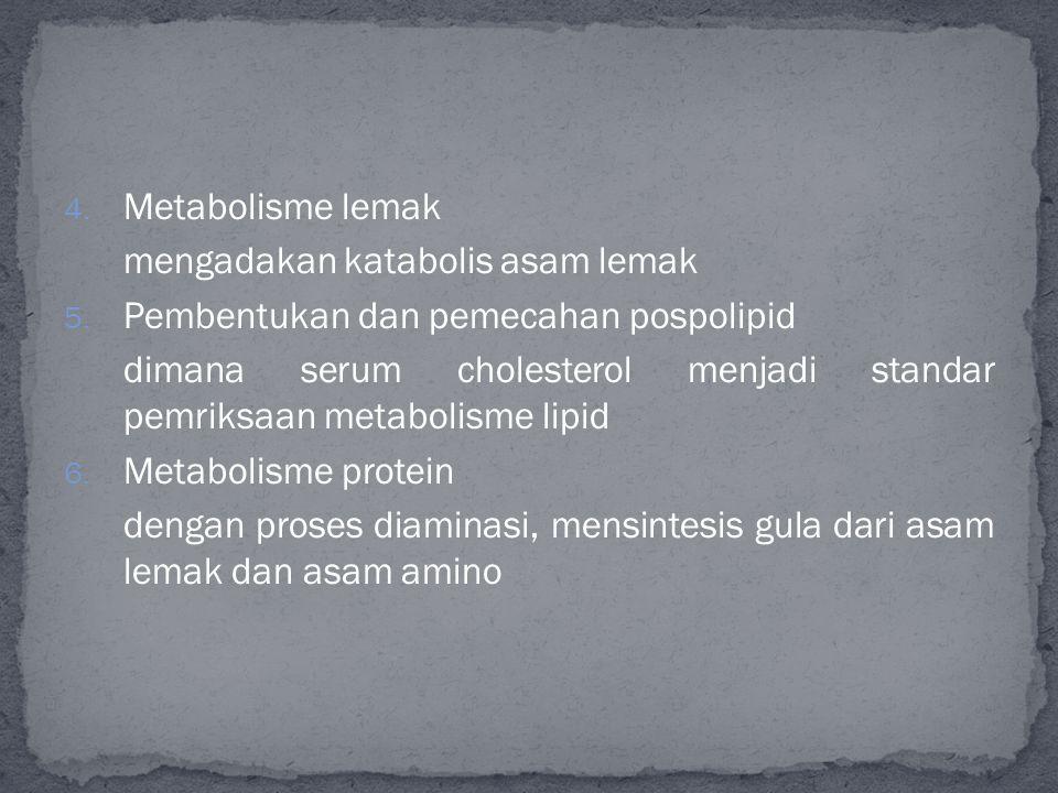 4.Metabolisme lemak mengadakan katabolis asam lemak 5.