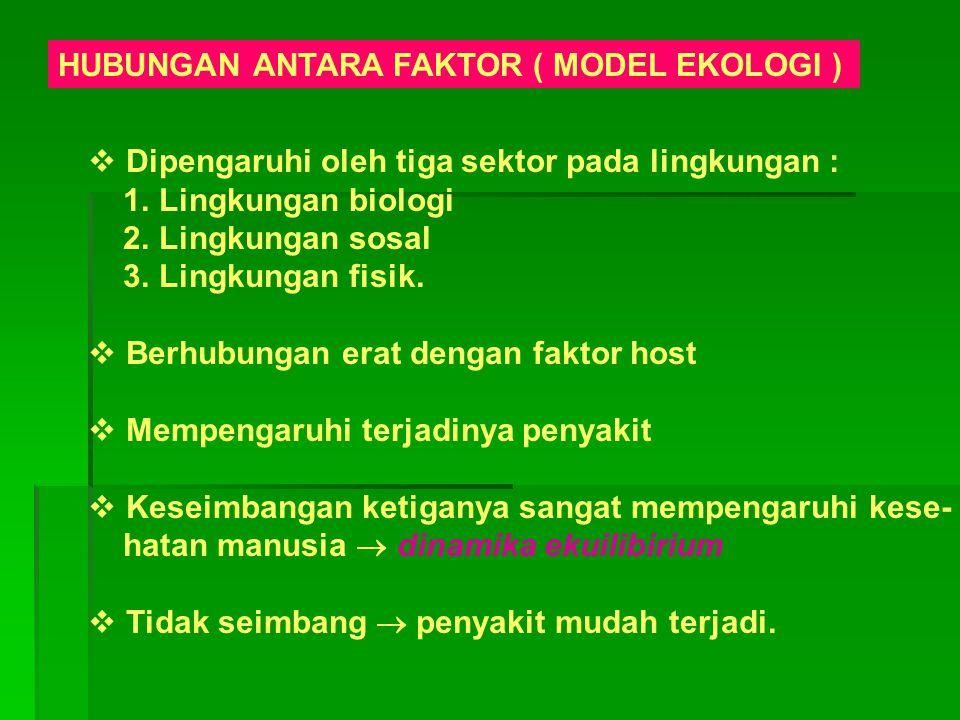 HUBUNGAN ANTARA FAKTOR ( MODEL EKOLOGI )  Dipengaruhi oleh tiga sektor pada lingkungan : 1. Lingkungan biologi 2. Lingkungan sosal 3. Lingkungan fisi