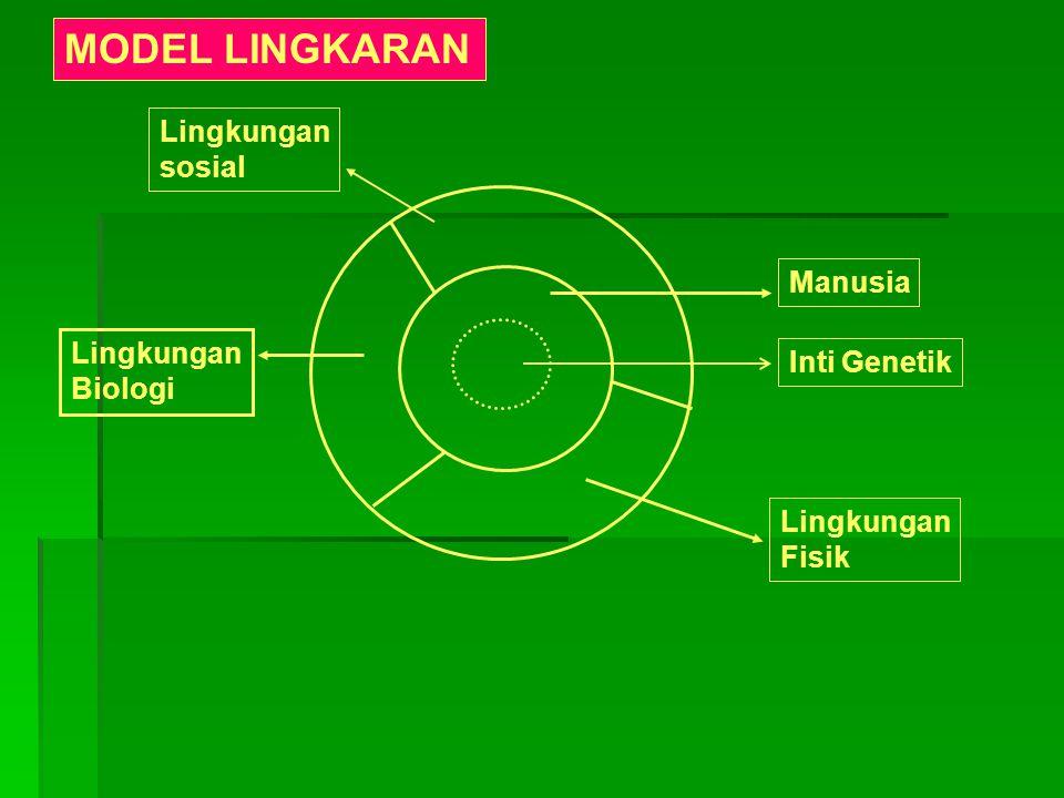 Inti Genetik Lingkungan Fisik Manusia Lingkungan Biologi Lingkungan sosial MODEL LINGKARAN