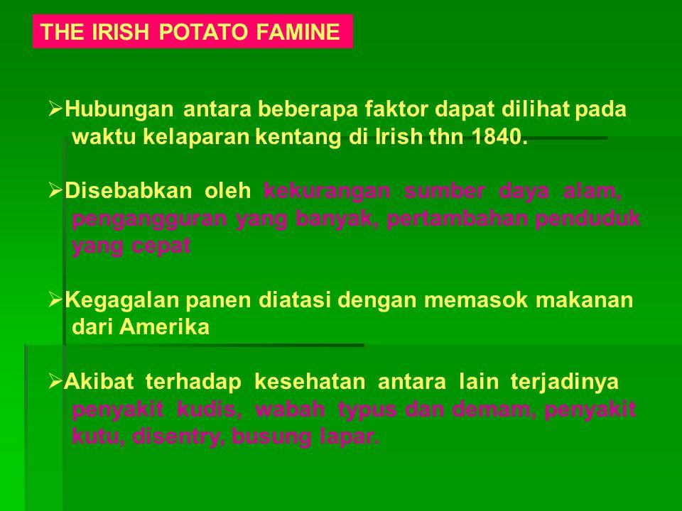 THE IRISH POTATO FAMINE  Hubungan antara beberapa faktor dapat dilihat pada waktu kelaparan kentang di Irish thn 1840.  Disebabkan oleh kekurangan s