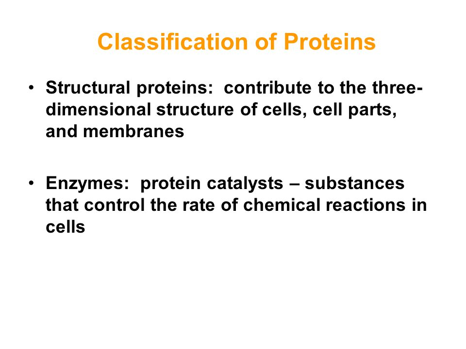 Classification of Proteins Structural proteins: contribute to the three- dimensional structure of cells, cell parts, and membranes Enzymes: protein ca