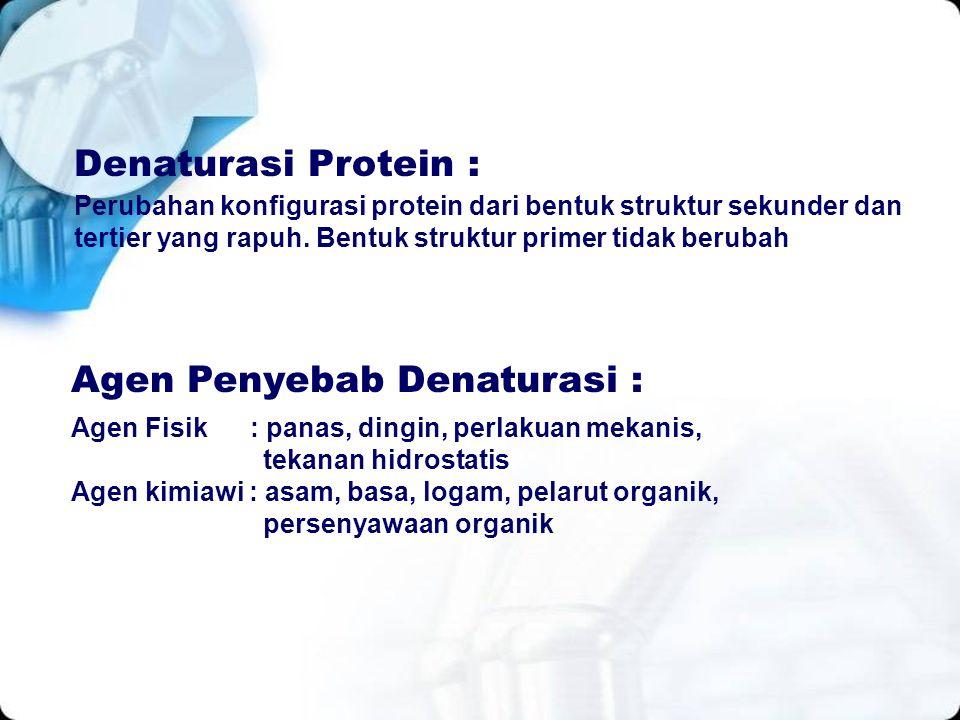 Perubahan konfigurasi protein dari bentuk struktur sekunder dan tertier yang rapuh. Bentuk struktur primer tidak berubah Denaturasi Protein : Agen Fis