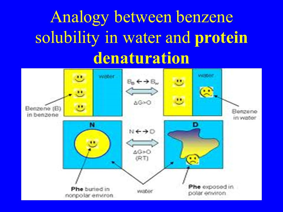 Analogy between benzene solubility in water and protein denaturation