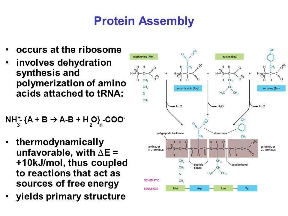 Perubahan konfigurasi protein dari bentuk struktur sekunder dan tertier yang rapuh.