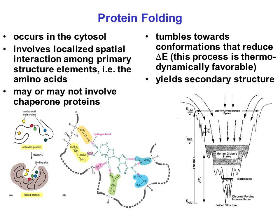 Protein Denaturation. organized molecular configuration is disturbed
