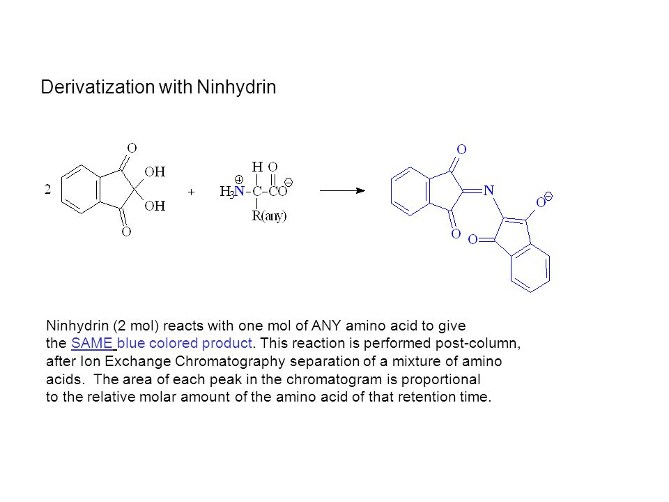 Derivatization with Ninhydrin Ninhydrin (2 mol) reacts with one mol of ANY amino acid to give the SAME blue colored product. This reaction is performe