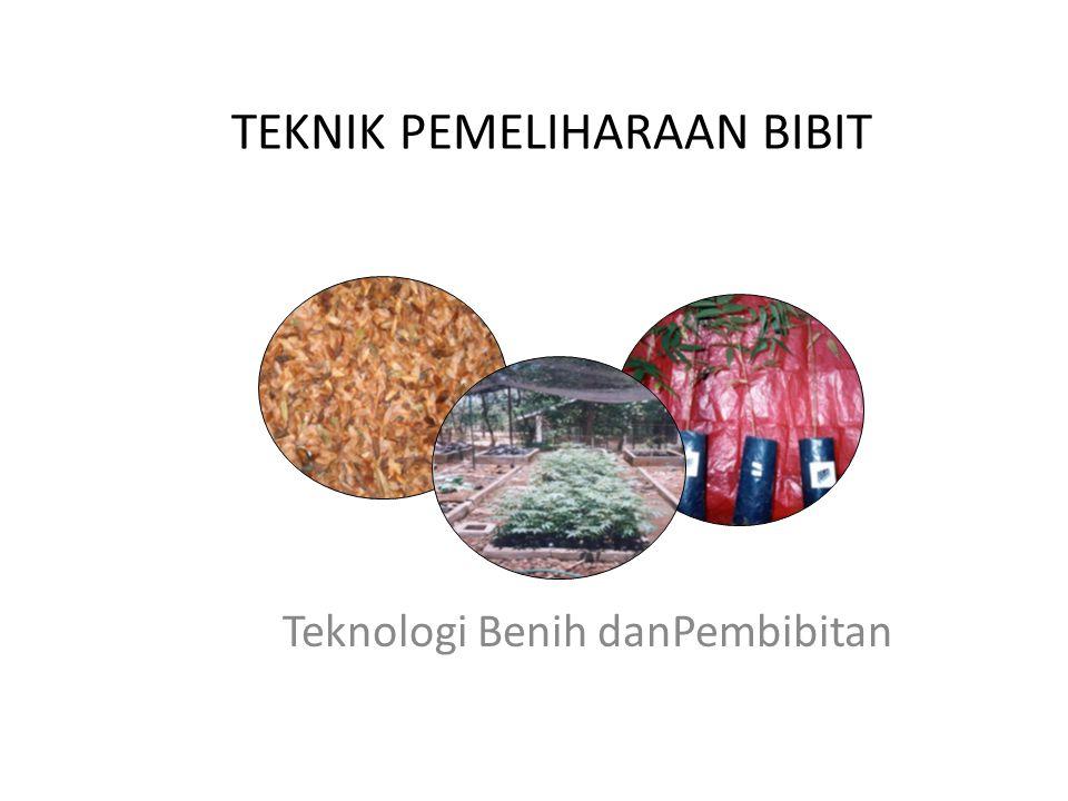 TEKNIK PEMELIHARAAN BIBIT Teknologi Benih danPembibitan