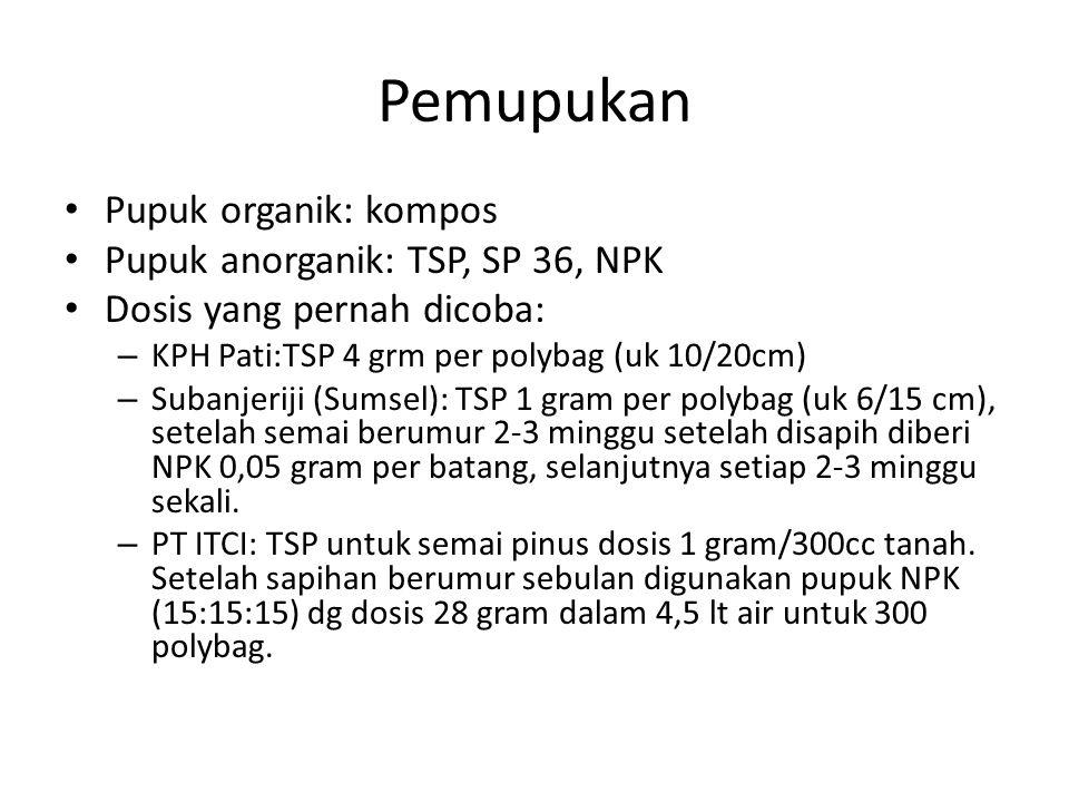 Pemupukan Pupuk organik: kompos Pupuk anorganik: TSP, SP 36, NPK Dosis yang pernah dicoba: – KPH Pati:TSP 4 grm per polybag (uk 10/20cm) – Subanjeriji (Sumsel): TSP 1 gram per polybag (uk 6/15 cm), setelah semai berumur 2-3 minggu setelah disapih diberi NPK 0,05 gram per batang, selanjutnya setiap 2-3 minggu sekali.