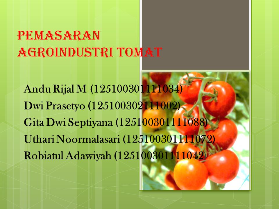 Pemasaran Agroindustri Tomat Andu Rijal M (125100301111034) Dwi Prasetyo (125100302111002) Gita Dwi Septiyana (125100301111088) Uthari Noormalasari (1