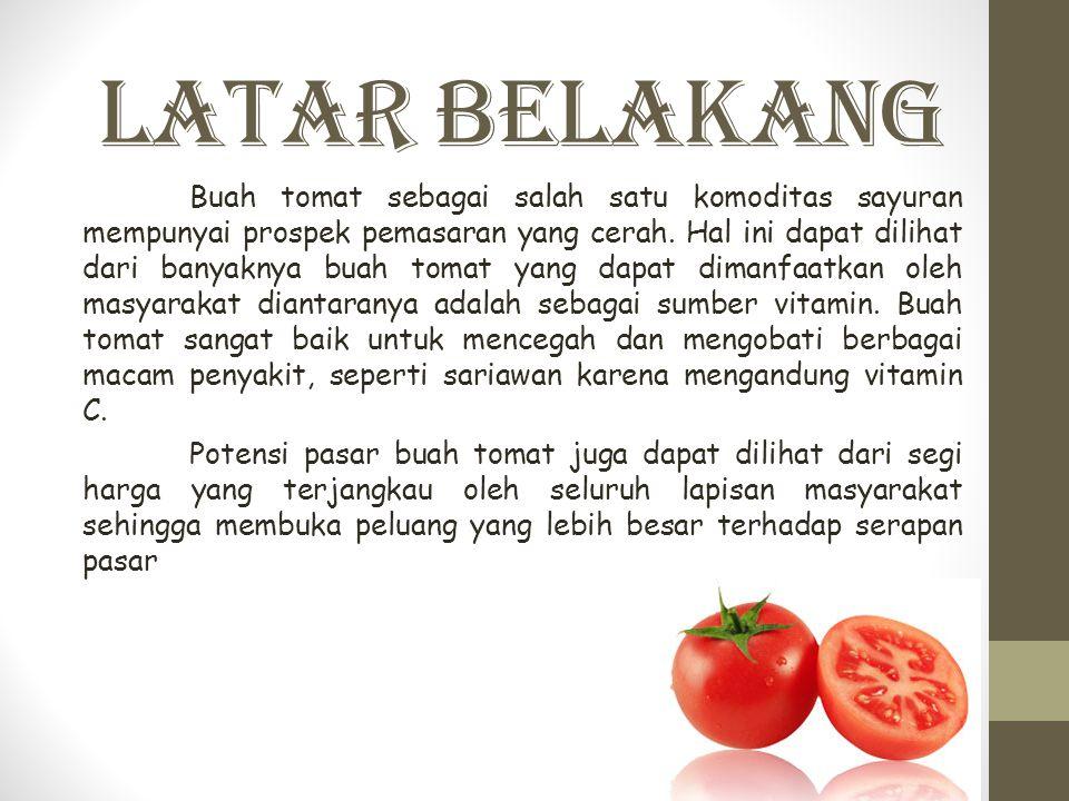 Latar Belakang Buah tomat sebagai salah satu komoditas sayuran mempunyai prospek pemasaran yang cerah. Hal ini dapat dilihat dari banyaknya buah tomat