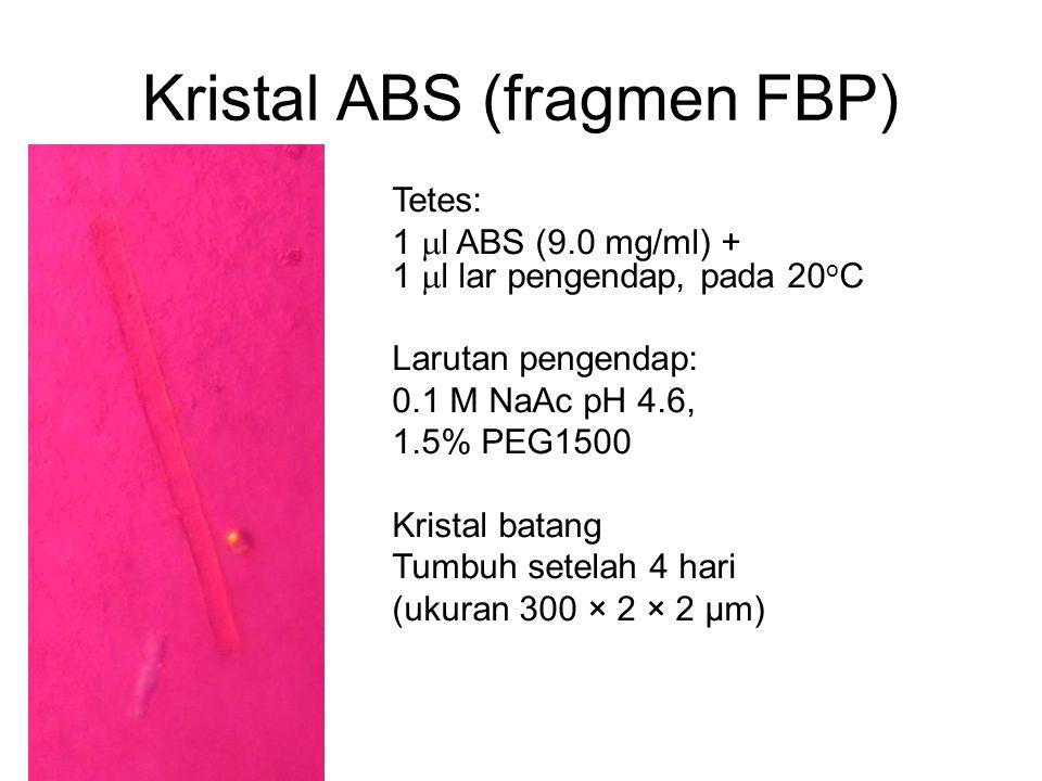 Tetes: 1  l ABS (9.0 mg/ml) + 1  l lar pengendap, pada 20 o C Larutan pengendap: 0.1 M NaAc pH 4.6, 1.5% PEG1500 Kristal batang Tumbuh setelah 4 har