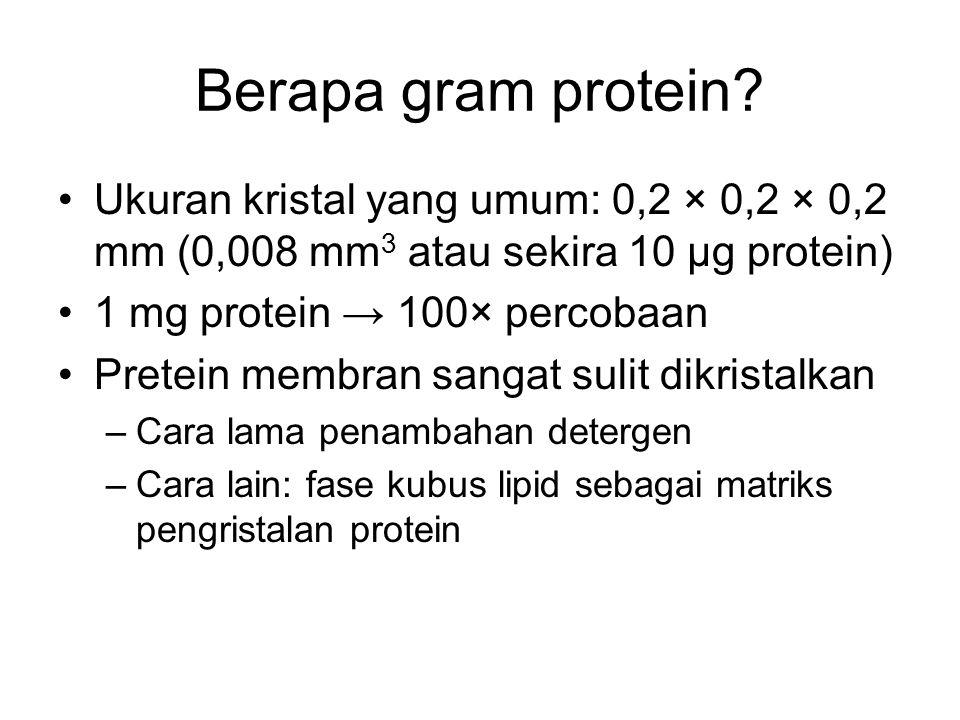 Berapa gram protein? Ukuran kristal yang umum: 0,2 × 0,2 × 0,2 mm (0,008 mm 3 atau sekira 10 µg protein) 1 mg protein → 100× percobaan Pretein membran