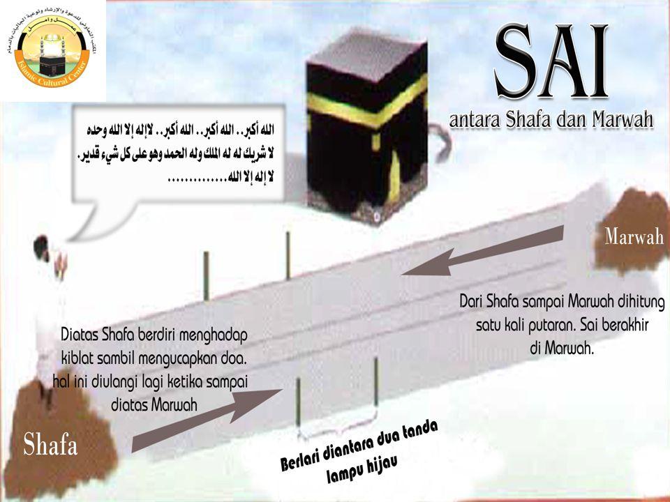  Setelah itu turun dari bukit Shafa menuju ke bukit Marwah, mengucapkan bacaan: أَبْدَأُ بِمَا بَدَأَ اللهُ بِه  Berjalanlah biasa sampai pada tempa