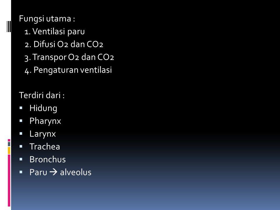 Fungsi utama : 1. Ventilasi paru 2. Difusi O2 dan CO2 3. Transpor O2 dan CO2 4. Pengaturan ventilasi Terdiri dari :  Hidung  Pharynx  Larynx  Trac