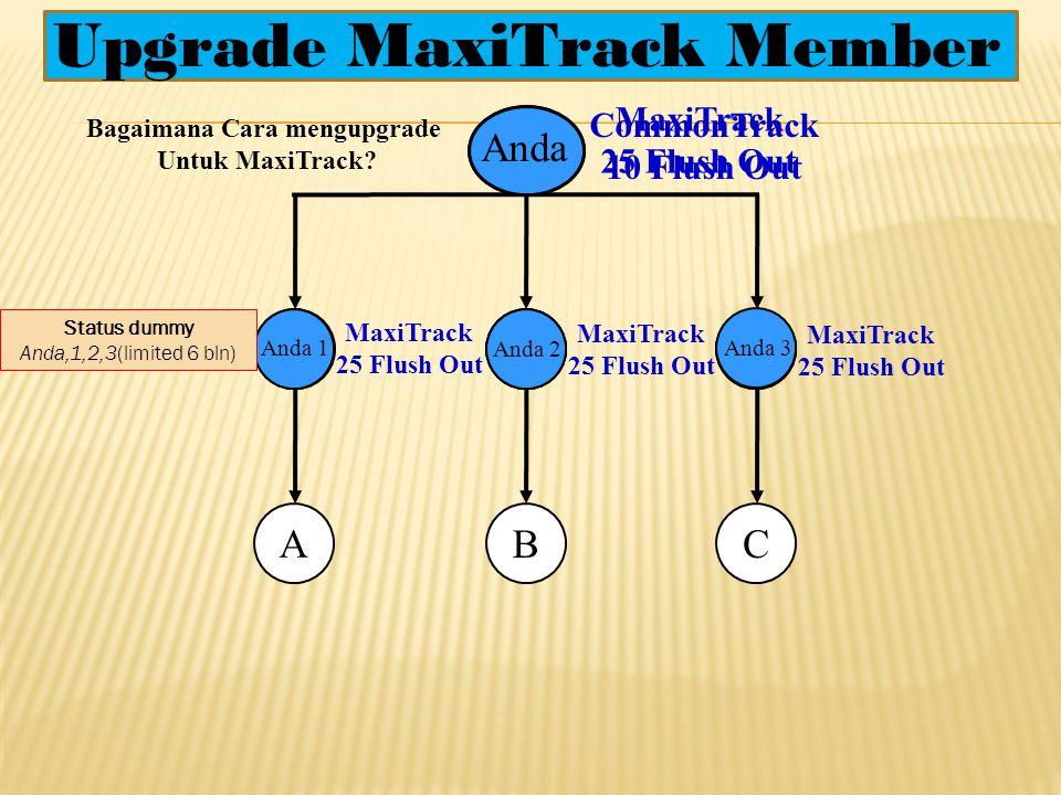 3. Bonus Dual Placement(DP) Anda A 25% dari Bonus Mini Maching A A adalah Member yang Anda Sponsori di Plan A maupun dari program Magic Track dan tida