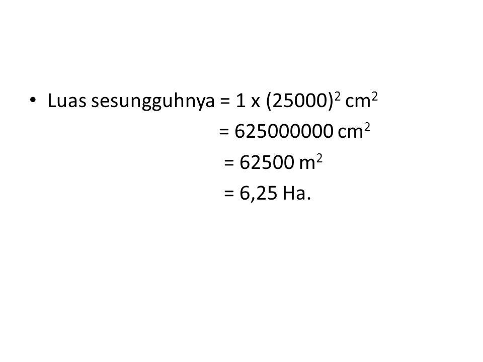 Luas sesungguhnya = 1 x (25000) 2 cm 2 = 625000000 cm 2 = 62500 m 2 = 6,25 Ha.