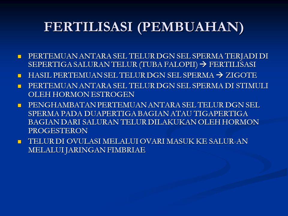 FERTILISASI (PEMBUAHAN) PERTEMUAN ANTARA SEL TELUR DGN SEL SPERMA TERJADI DI SEPERTIGA SALURAN TELUR (TUBA FALOPII)  FERTILISASI PERTEMUAN ANTARA SEL TELUR DGN SEL SPERMA TERJADI DI SEPERTIGA SALURAN TELUR (TUBA FALOPII)  FERTILISASI HASIL PERTEMUAN SEL TELUR DGN SEL SPERMA  ZIGOTE HASIL PERTEMUAN SEL TELUR DGN SEL SPERMA  ZIGOTE PERTEMUAN ANTARA SEL TELUR DGN SEL SPERMA DI STIMULI OLEH HORMON ESTROGEN PERTEMUAN ANTARA SEL TELUR DGN SEL SPERMA DI STIMULI OLEH HORMON ESTROGEN PENGHAMBATAN PERTEMUAN ANTARA SEL TELUR DGN SEL SPERMA PADA DUAPERTIGA BAGIAN ATAU TIGAPERTIGA BAGIAN DARI SALURAN TELUR DILAKUKAN OLEH HORMON PROGESTERON PENGHAMBATAN PERTEMUAN ANTARA SEL TELUR DGN SEL SPERMA PADA DUAPERTIGA BAGIAN ATAU TIGAPERTIGA BAGIAN DARI SALURAN TELUR DILAKUKAN OLEH HORMON PROGESTERON TELUR DI OVULASI MELALUI OVARI MASUK KE SALUR-AN MELALUI JARINGAN FIMBRIAE TELUR DI OVULASI MELALUI OVARI MASUK KE SALUR-AN MELALUI JARINGAN FIMBRIAE