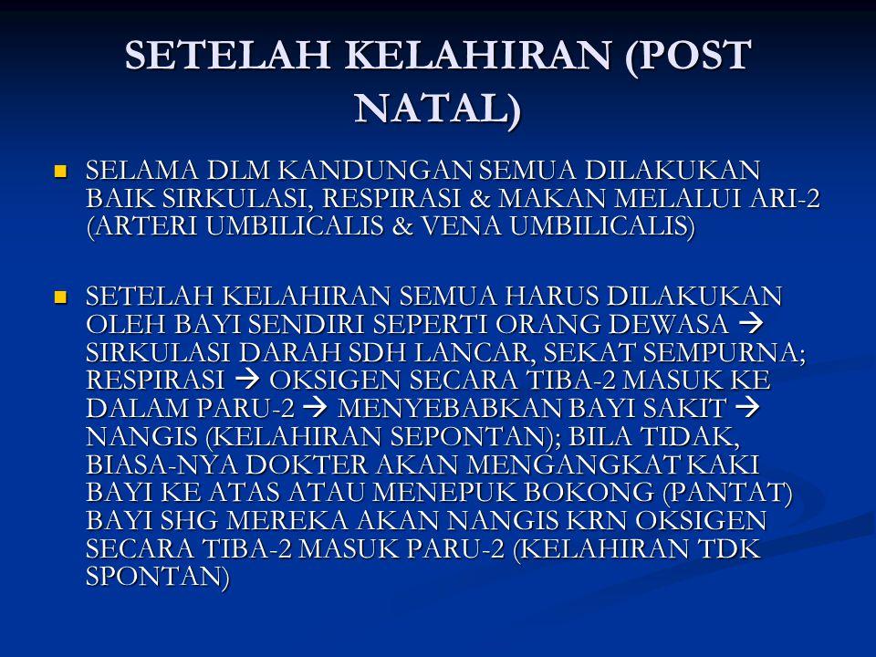 SETELAH KELAHIRAN (POST NATAL) SELAMA DLM KANDUNGAN SEMUA DILAKUKAN BAIK SIRKULASI, RESPIRASI & MAKAN MELALUI ARI-2 (ARTERI UMBILICALIS & VENA UMBILICALIS) SELAMA DLM KANDUNGAN SEMUA DILAKUKAN BAIK SIRKULASI, RESPIRASI & MAKAN MELALUI ARI-2 (ARTERI UMBILICALIS & VENA UMBILICALIS) SETELAH KELAHIRAN SEMUA HARUS DILAKUKAN OLEH BAYI SENDIRI SEPERTI ORANG DEWASA  SIRKULASI DARAH SDH LANCAR, SEKAT SEMPURNA; RESPIRASI  OKSIGEN SECARA TIBA-2 MASUK KE DALAM PARU-2  MENYEBABKAN BAYI SAKIT  NANGIS (KELAHIRAN SEPONTAN); BILA TIDAK, BIASA-NYA DOKTER AKAN MENGANGKAT KAKI BAYI KE ATAS ATAU MENEPUK BOKONG (PANTAT) BAYI SHG MEREKA AKAN NANGIS KRN OKSIGEN SECARA TIBA-2 MASUK PARU-2 (KELAHIRAN TDK SPONTAN) SETELAH KELAHIRAN SEMUA HARUS DILAKUKAN OLEH BAYI SENDIRI SEPERTI ORANG DEWASA  SIRKULASI DARAH SDH LANCAR, SEKAT SEMPURNA; RESPIRASI  OKSIGEN SECARA TIBA-2 MASUK KE DALAM PARU-2  MENYEBABKAN BAYI SAKIT  NANGIS (KELAHIRAN SEPONTAN); BILA TIDAK, BIASA-NYA DOKTER AKAN MENGANGKAT KAKI BAYI KE ATAS ATAU MENEPUK BOKONG (PANTAT) BAYI SHG MEREKA AKAN NANGIS KRN OKSIGEN SECARA TIBA-2 MASUK PARU-2 (KELAHIRAN TDK SPONTAN)