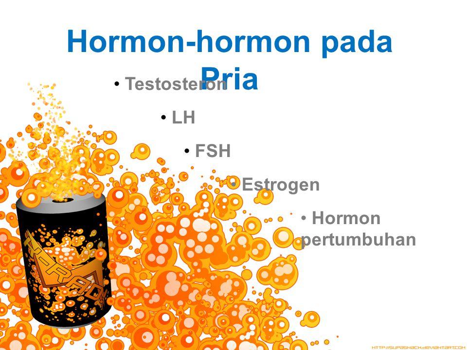 Hormon-hormon pada Pria Testosteron LH FSH Estrogen Hormon pertumbuhan