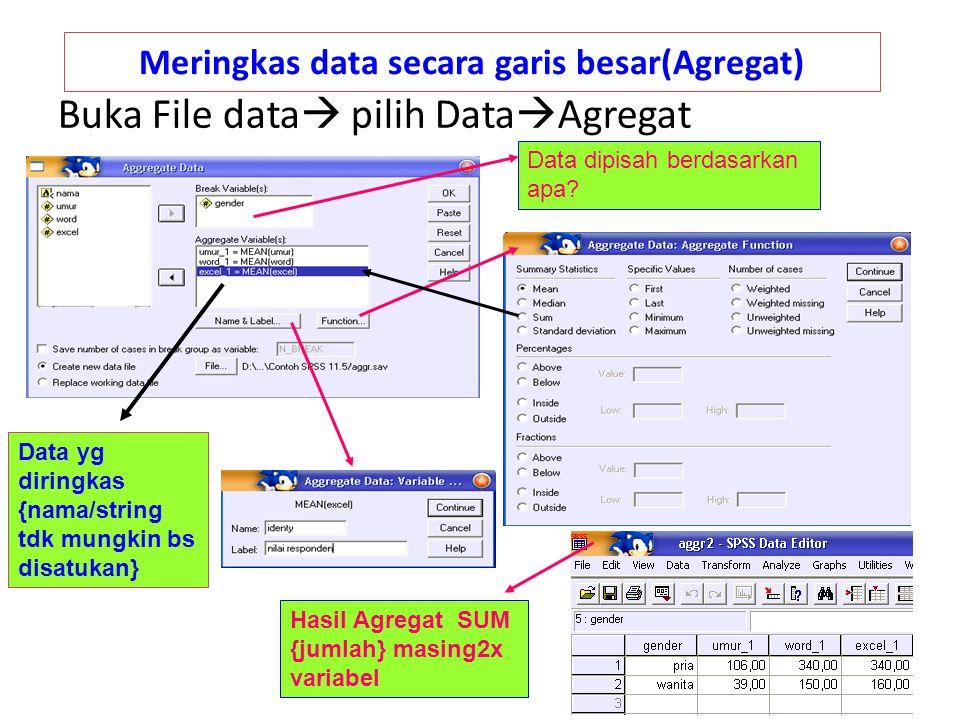 Meringkas data secara garis besar(Agregat) Buka File data  pilih Data  Agregat Data dipisah berdasarkan apa? Data yg diringkas {nama/string tdk mung