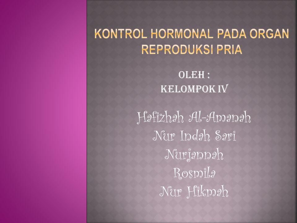 Oleh : Kelompok IV Hafizhah Al-Amanah Nur Indah Sari Nurjannah Rosmila Nur Hikmah