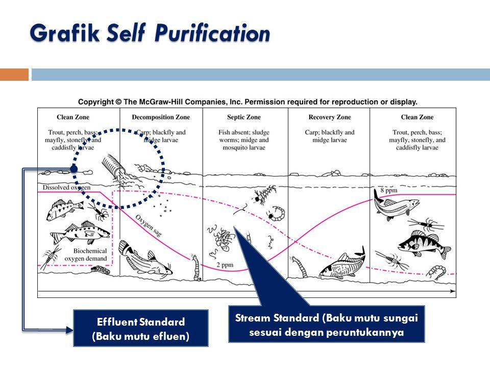 Grafik Self Purification Effluent Standard (Baku mutu efluen) Stream Standard (Baku mutu sungai sesuai dengan peruntukannya