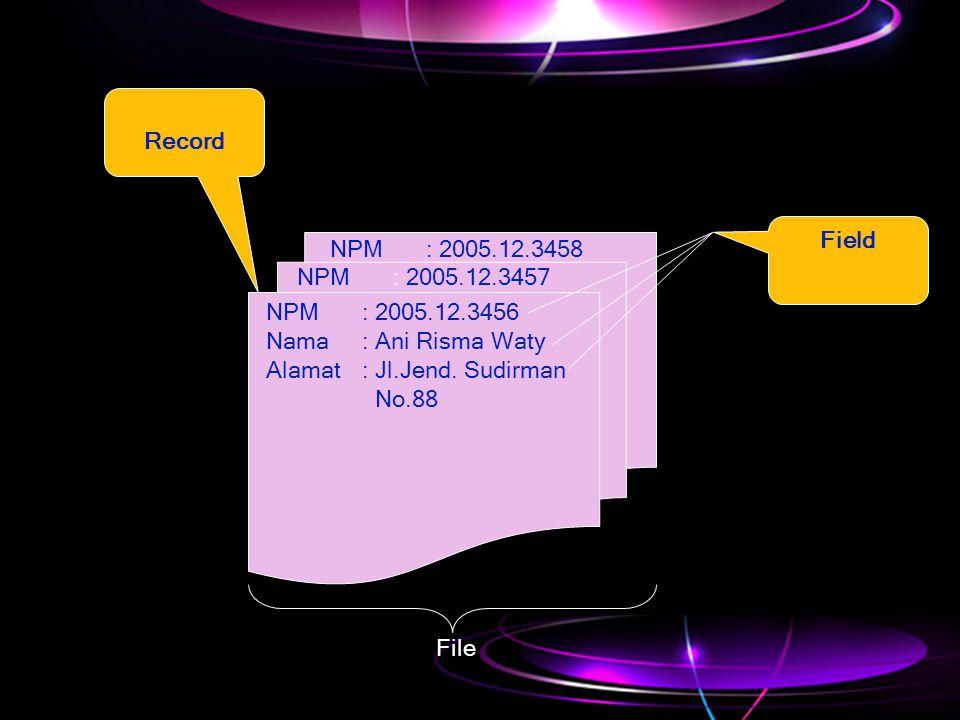 NPM: 2005.12.3456 Nama: Ani Risma Waty Alamat: Jl.Jend. Sudirman No.88 NPM: 2005.12.3457 NPM: 2005.12.3458 Record Field File