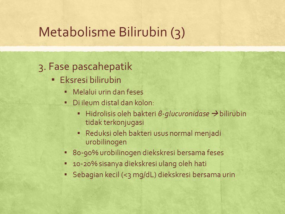 Metabolisme Bilirubin (3) 3. Fase pascahepatik ▪ Eksresi bilirubin ▪ Melalui urin dan feses ▪ Di ileum distal dan kolon: ▪ Hidrolisis oleh bakteri β-g