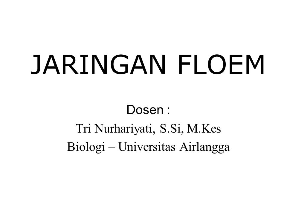 JARINGAN FLOEM Dosen : Tri Nurhariyati, S.Si, M.Kes Biologi – Universitas Airlangga