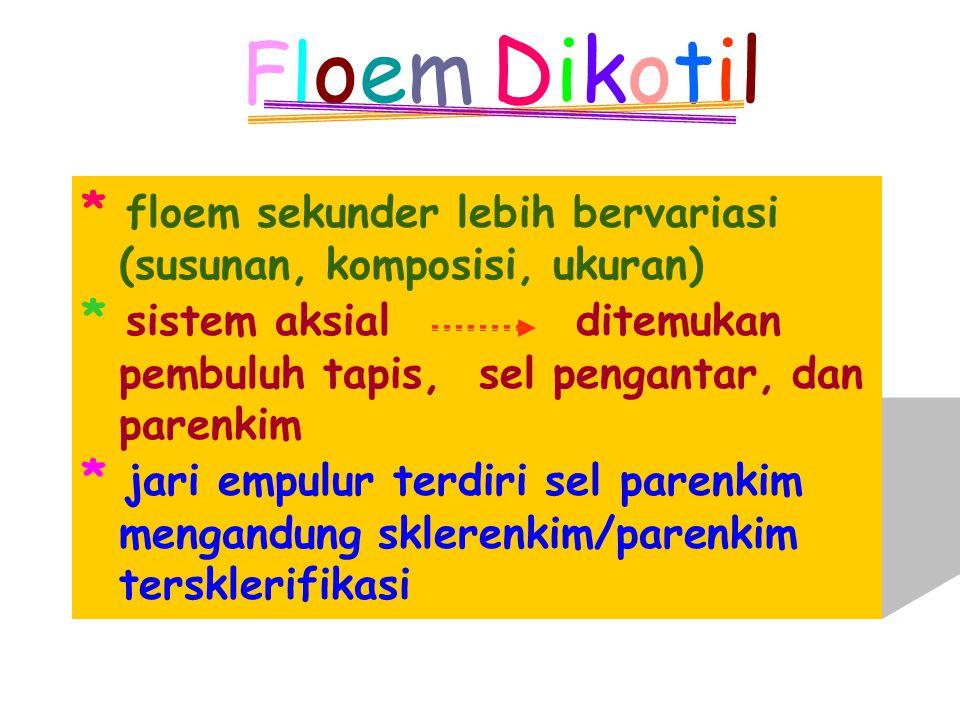 Floem DikotilFloem Dikotil * floem sekunder lebih bervariasi (susunan, komposisi, ukuran) * sistem aksial ditemukan pembuluh tapis, sel pengantar, dan