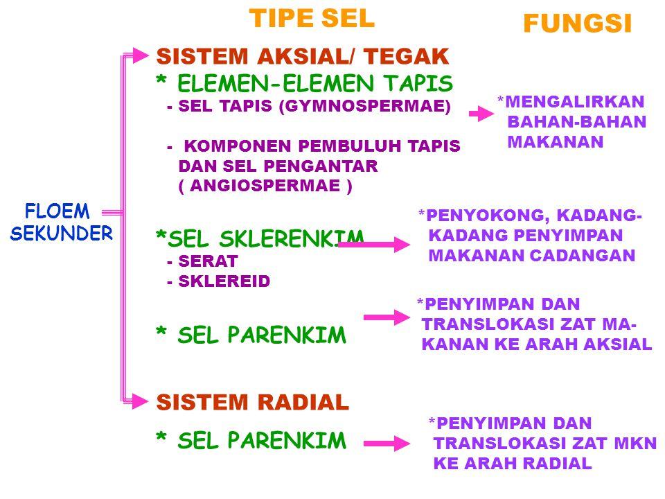 FLOEM SEKUNDER SISTEM AKSIAL/ TEGAK * ELEMEN-ELEMEN TAPIS - SEL TAPIS (GYMNOSPERMAE) - KOMPONEN PEMBULUH TAPIS DAN SEL PENGANTAR ( ANGIOSPERMAE ) *SEL