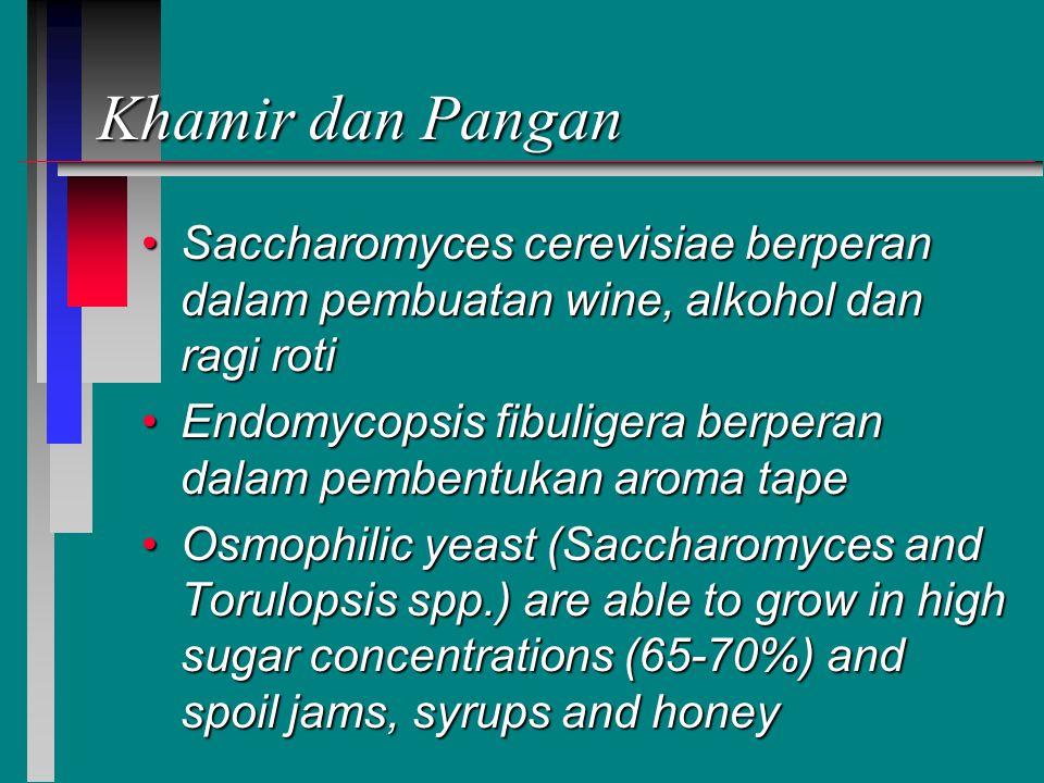 Khamir dan Pangan Saccharomyces cerevisiae berperan dalam pembuatan wine, alkohol dan ragi rotiSaccharomyces cerevisiae berperan dalam pembuatan wine, alkohol dan ragi roti Endomycopsis fibuligera berperan dalam pembentukan aroma tapeEndomycopsis fibuligera berperan dalam pembentukan aroma tape Osmophilic yeast (Saccharomyces and Torulopsis spp.) are able to grow in high sugar concentrations (65-70%) and spoil jams, syrups and honeyOsmophilic yeast (Saccharomyces and Torulopsis spp.) are able to grow in high sugar concentrations (65-70%) and spoil jams, syrups and honey