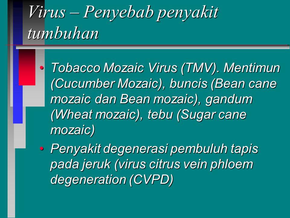 Virus – Penyebab penyakit tumbuhan Tobacco Mozaic Virus (TMV).