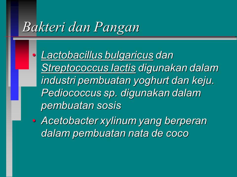 Bakteri dan Pangan Lactobacillus bulgaricus dan Streptococcus Iactis digunakan dalam industri pembuatan yoghurt dan keju.