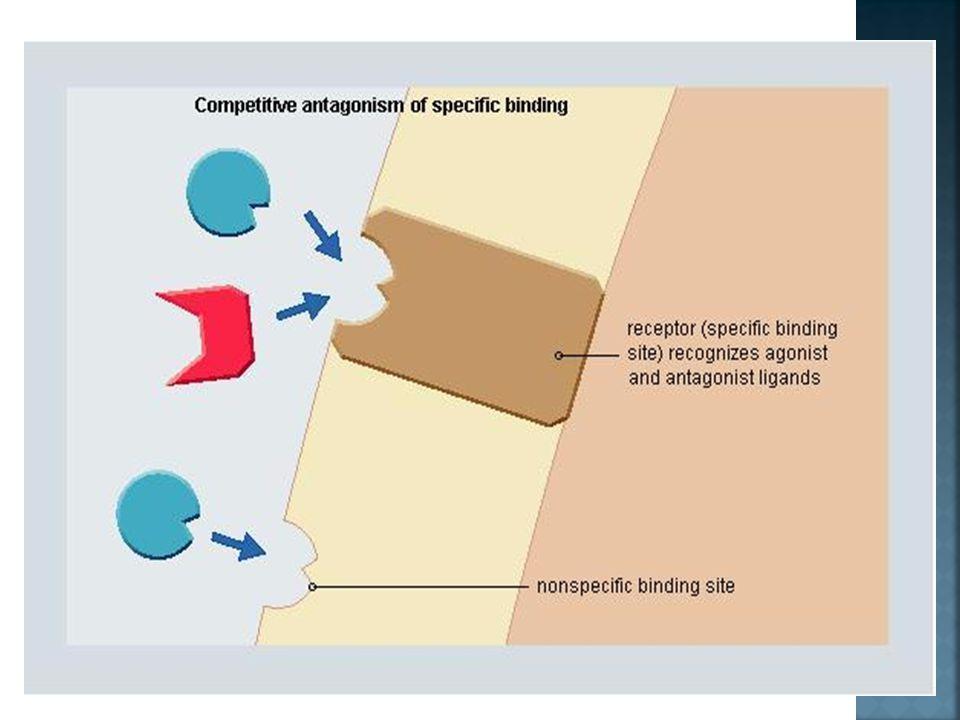  Antagonis menghalangi ikatan res dg agonisnya shg tjd hambatan agonis  Sering disebut dg Receptor Blocker atau Blocker  Antagonisme pd res bersifa