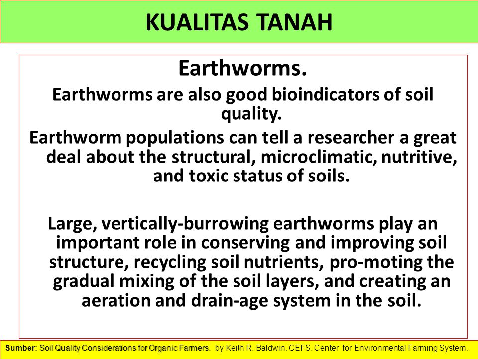 KUALITAS TANAH Earthworms. Earthworms are also good bioindicators of soil quality. Earthworm populations can tell a researcher a great deal about the