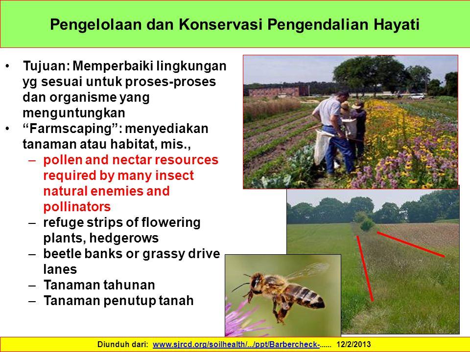 """Pengelolaan dan Konservasi Pengendalian Hayati Tujuan: Memperbaiki lingkungan yg sesuai untuk proses-proses dan organisme yang menguntungkan """"Farmscap"""