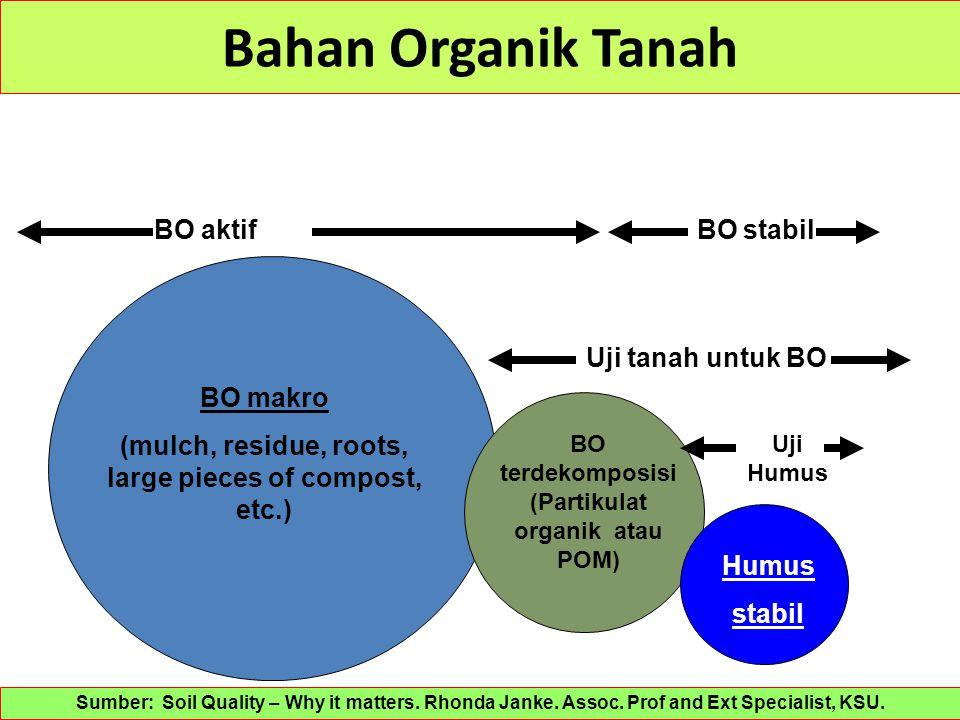 Bahan Organik Tanah Humus stabil BO makro (mulch, residue, roots, large pieces of compost, etc.) BO terdekomposisi (Partikulat organik atau POM) Uji t